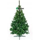 Коледна елха Alpina Ела