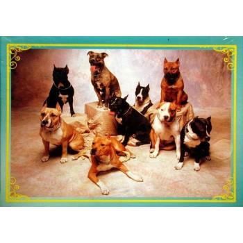 Пъзел с 300 части кучета